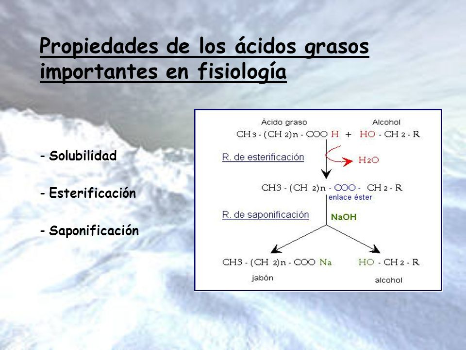 Propiedades de los ácidos grasos importantes en fisiología
