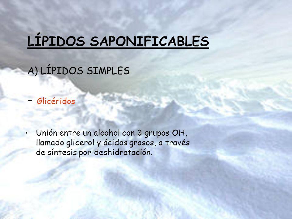 LÍPIDOS SAPONIFICABLES A) LÍPIDOS SIMPLES - Glicéridos