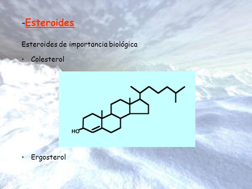 -Esteroides Esteroides de importancia biológica