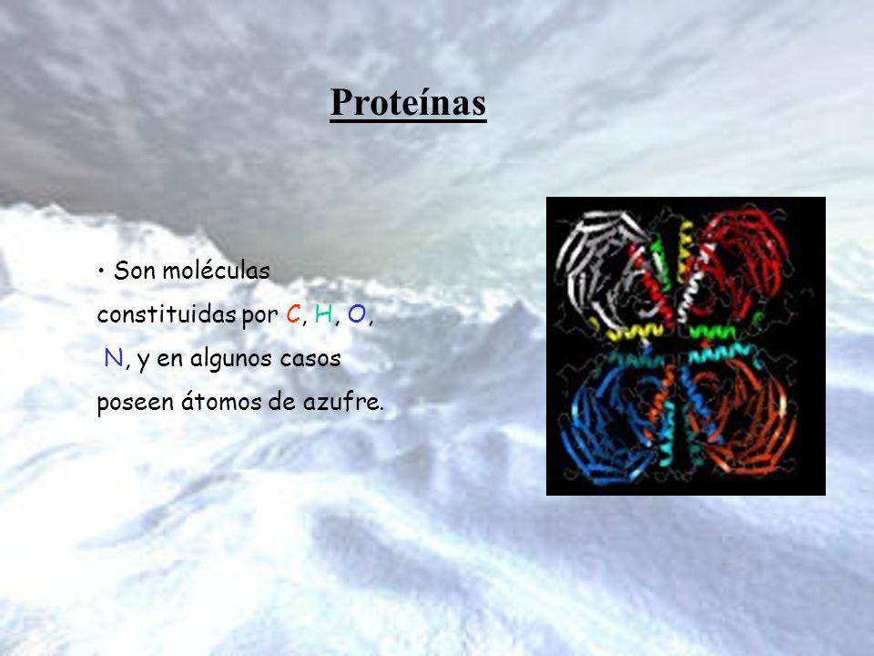 Proteínas Son moléculas constituidas por C, H, O,