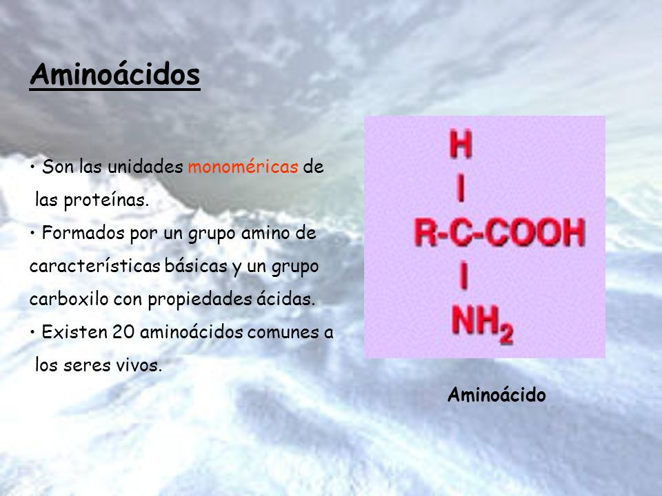 Aminoácidos Son las unidades monoméricas de las proteínas.