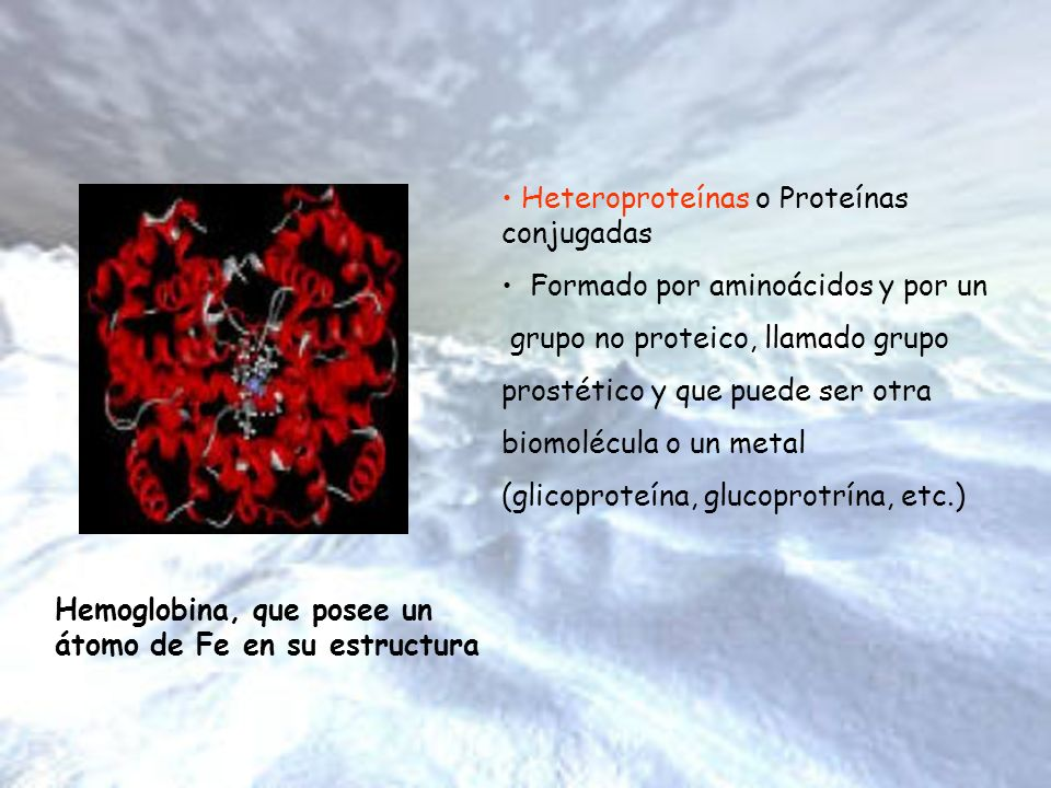 Heteroproteínas o Proteínas conjugadas