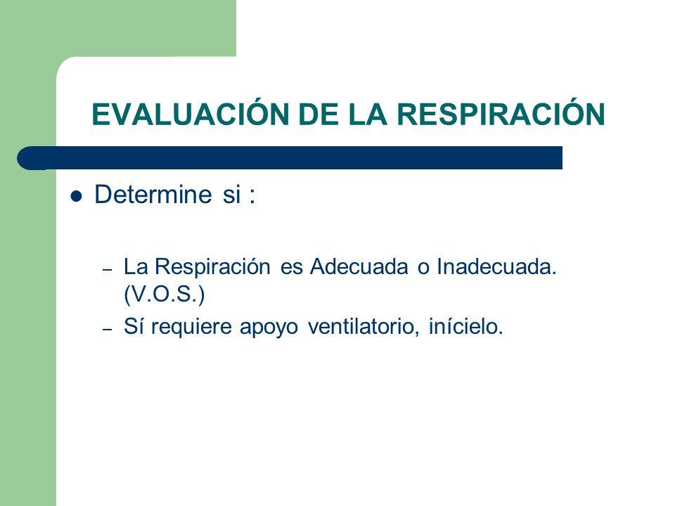 EVALUACIÓN DE LA RESPIRACIÓN