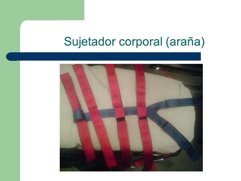 Sujetador corporal (araña)
