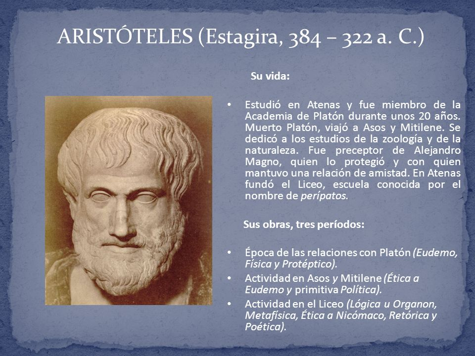 aristotles most ideal social and political good 50 quotes from politics: 'man is by nature a social animal an individual who is unsocial naturally and not accidentally is either beneath our notice or.