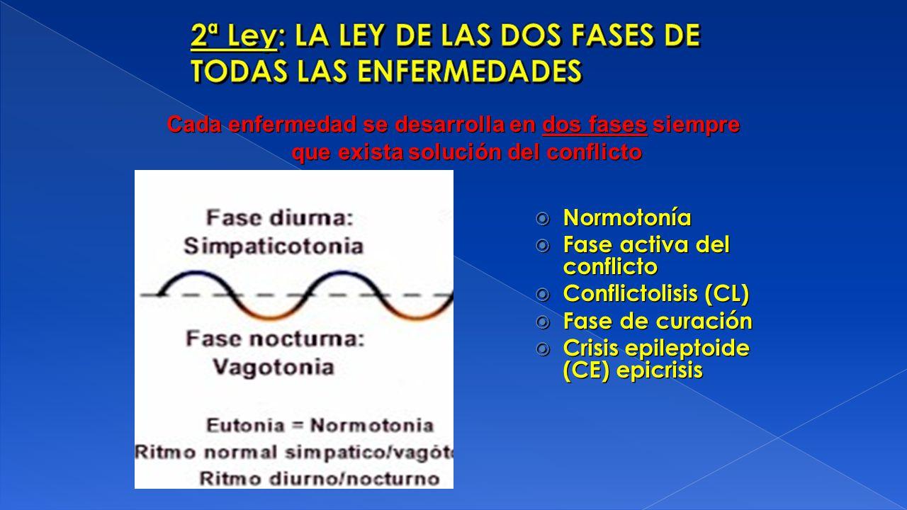 2ª Ley: LA LEY DE LAS DOS FASES DE TODAS LAS ENFERMEDADES