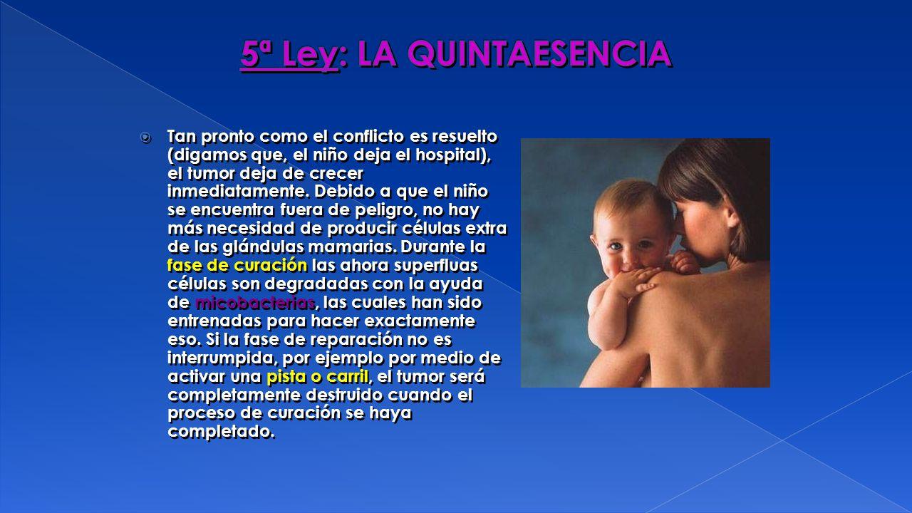 5ª Ley: LA QUINTAESENCIA
