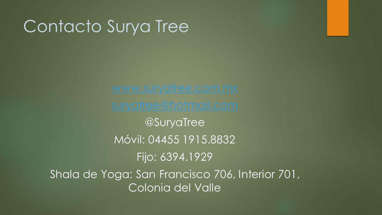 Contacto Surya Tree
