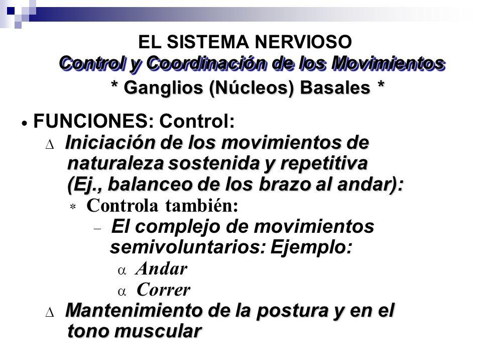 Iniciación de los movimientos de naturaleza sostenida y repetitiva