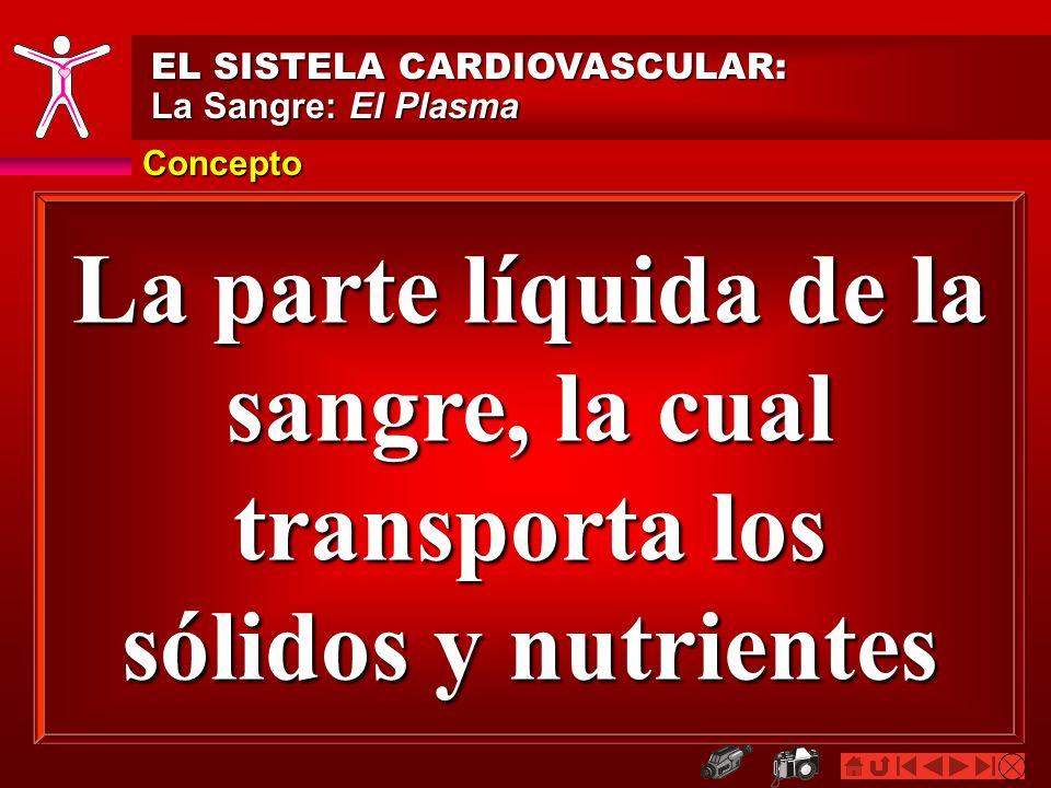 EL SISTELA CARDIOVASCULAR: