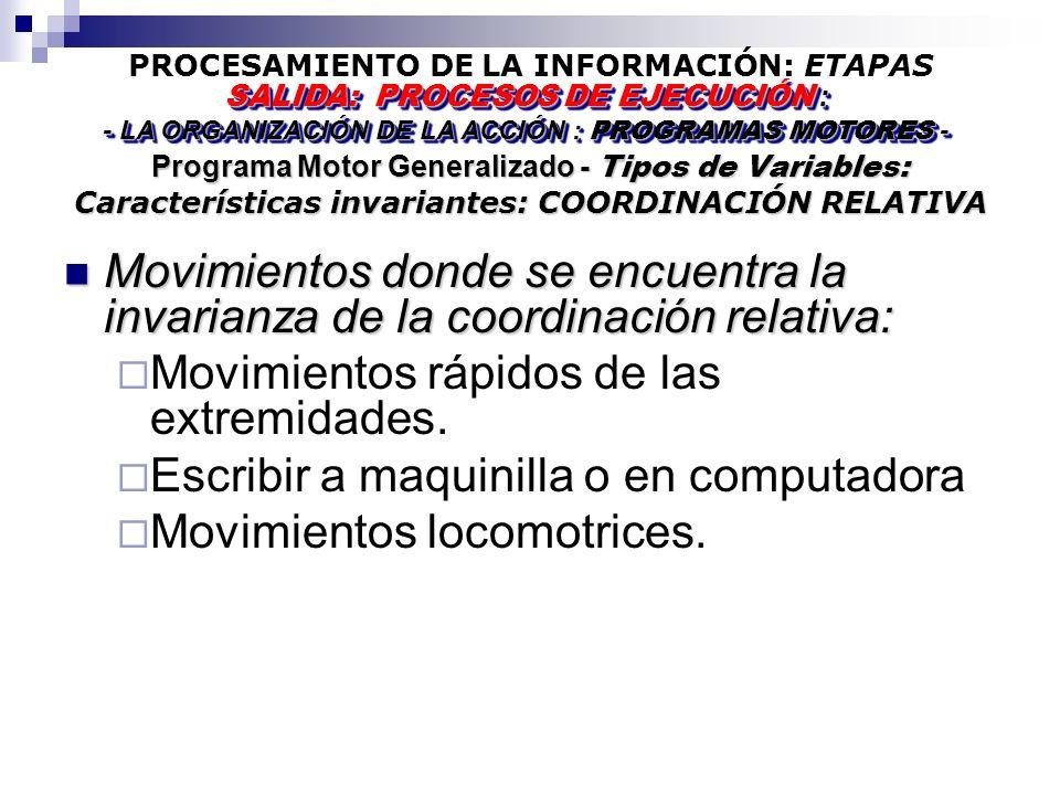 PROCESAMIENTO DE LA INFORMACIÓN: ETAPAS