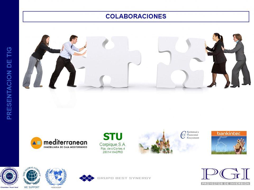 STU COLABORACIONES PRESENTACION DE TIG Corpique,S.A.