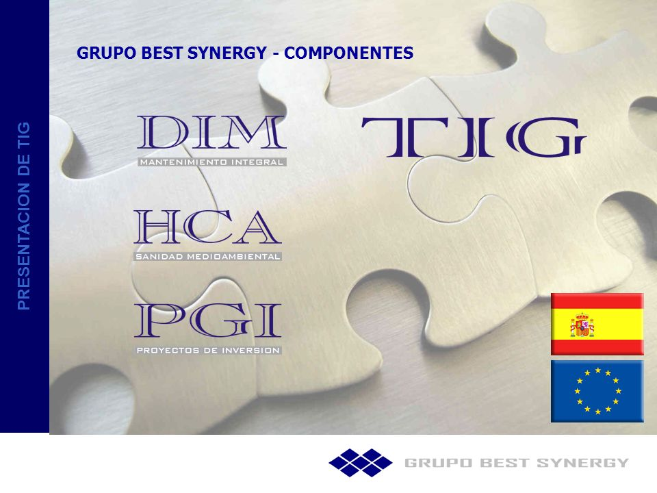GRUPO BEST SYNERGY - COMPONENTES