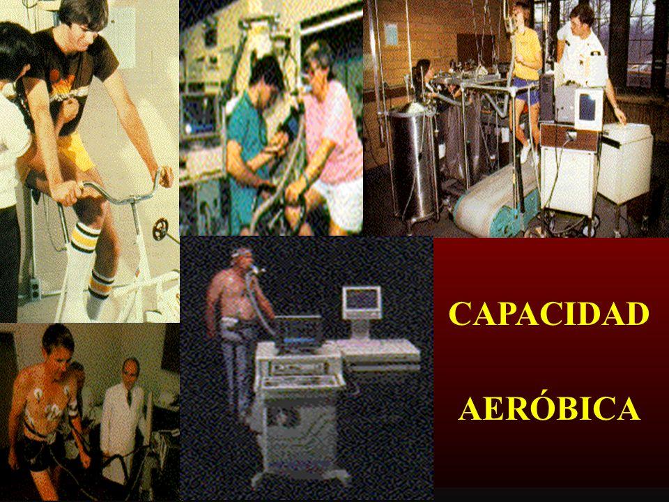 CAPACIDAD AERÓBICA