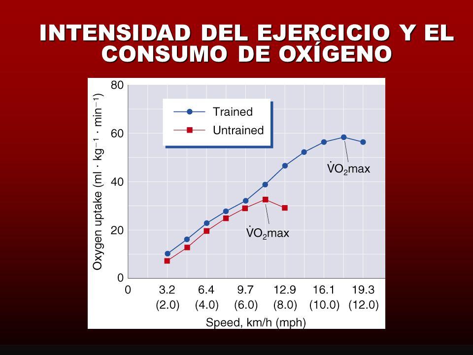INTENSIDAD DEL EJERCICIO Y EL CONSUMO DE OXÍGENO