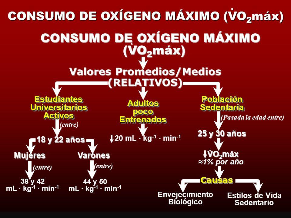 CONSUMO DE OXÍGENO MÁXIMO (VO2máx)