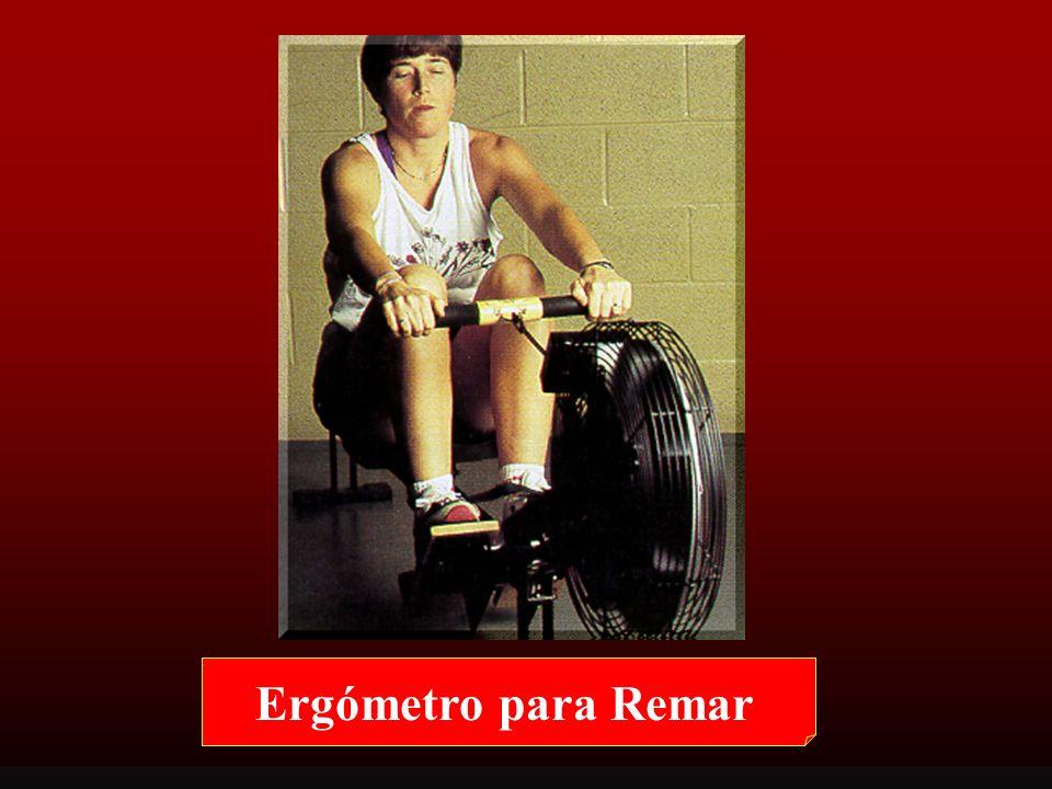 Ergómetro para Remar