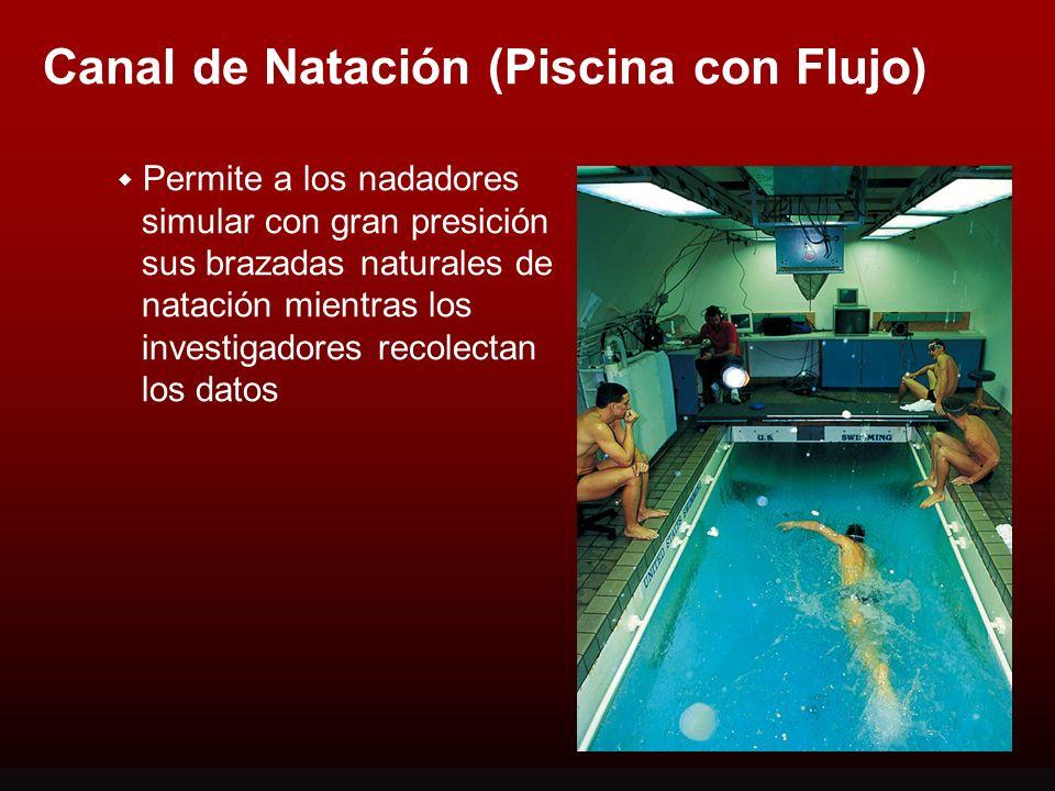 Canal de Natación (Piscina con Flujo)
