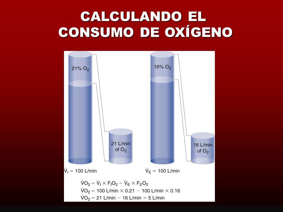 CALCULANDO EL CONSUMO DE OXÍGENO