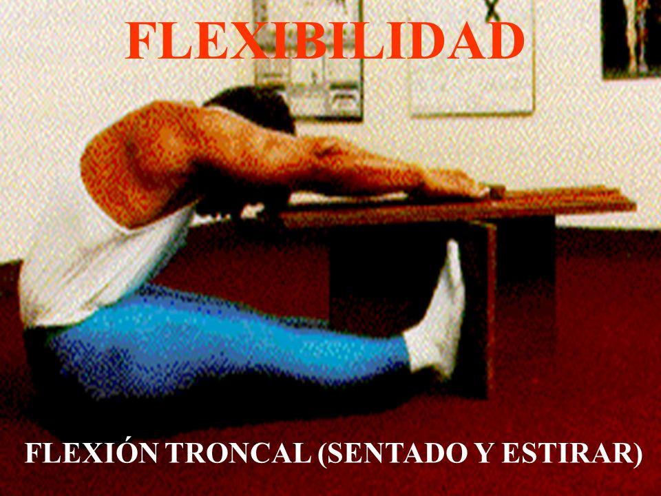 FLEXIÓN TRONCAL (SENTADO Y ESTIRAR)