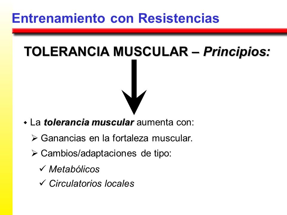 TOLERANCIA MUSCULAR – Principios: