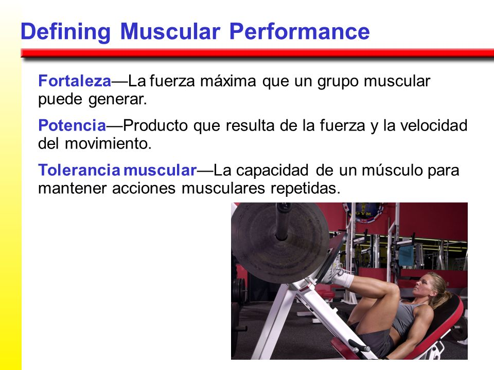 Defining Muscular Performance