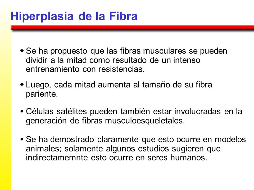 Hiperplasia de la Fibra