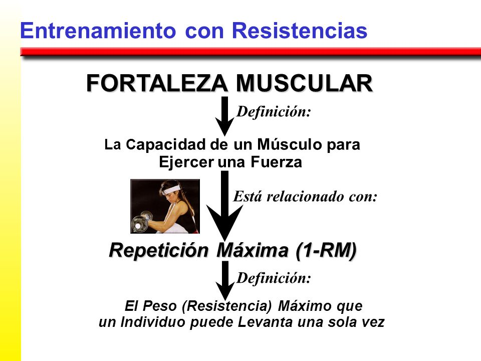 FORTALEZA MUSCULAR Entrenamiento con Resistencias