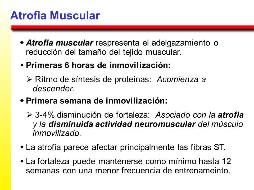 Atrofia Muscular w Atrofia muscular respresenta el adelgazamiento o reducción del tamaño del tejido muscular.
