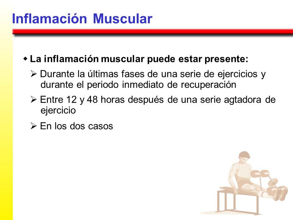 Inflamación Muscular w La inflamación muscular puede estar presente: