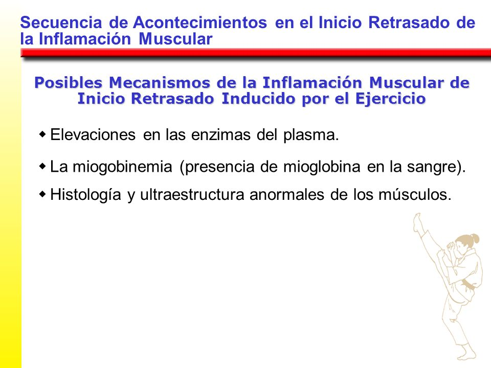 Secuencia de Acontecimientos en el Inicio Retrasado de la Inflamación Muscular