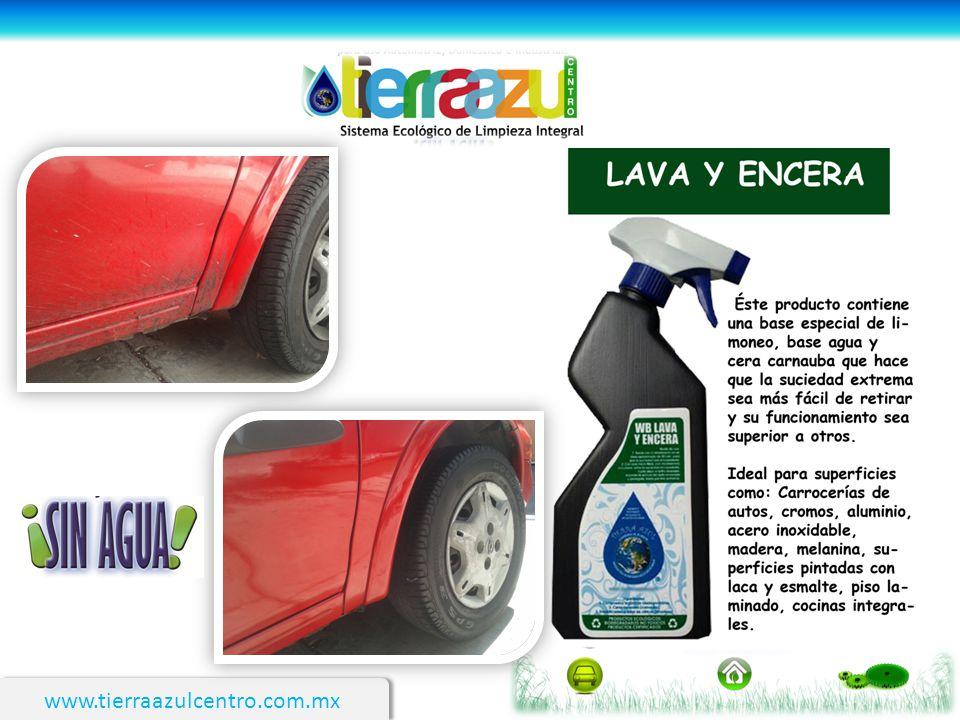 www.tierraazulcentro.com.mx