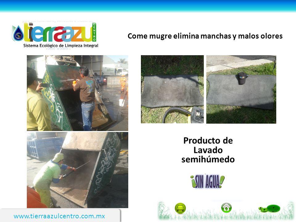 Producto de Lavado semihúmedo