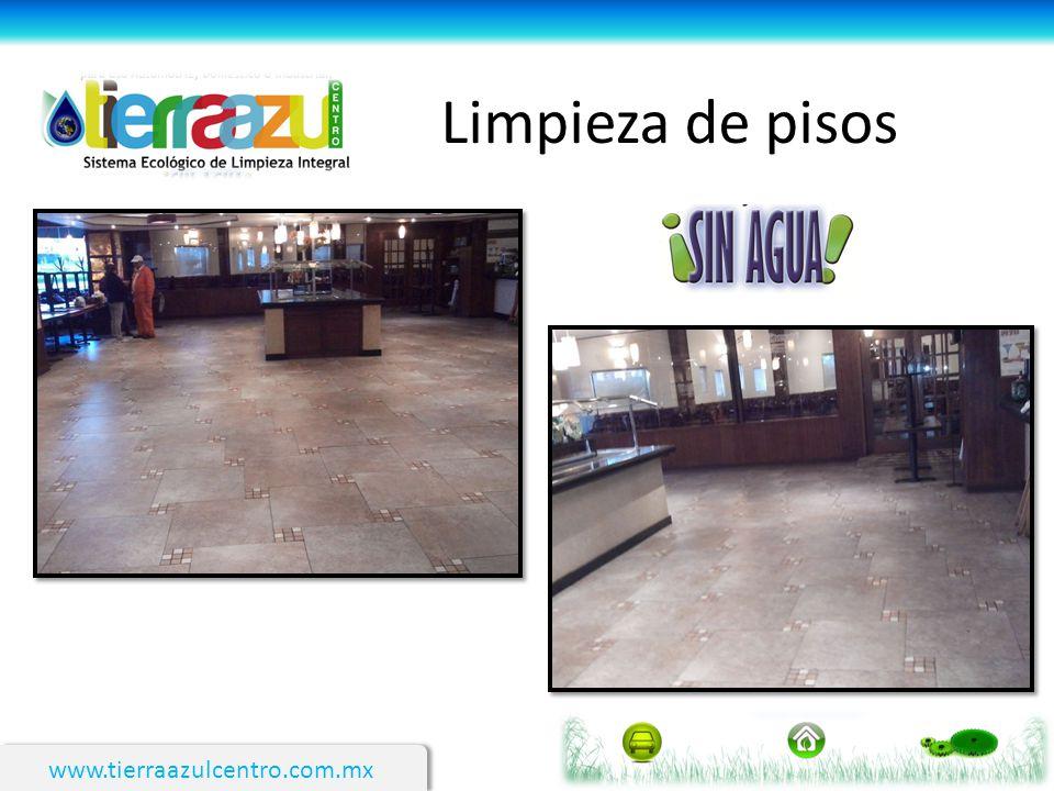 Limpieza de pisos www.tierraazulcentro.com.mx