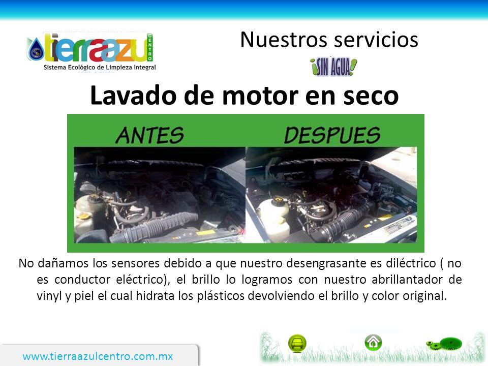 Lavado de motor en seco Nuestros servicios