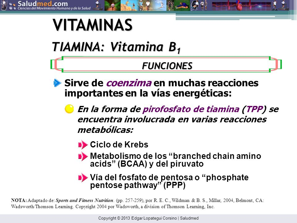 VITAMINAS TIAMINA: Vitamina B1 FUNCIONES