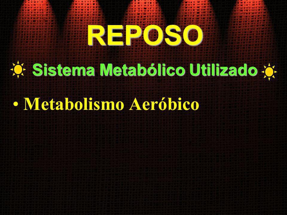 Sistema Metabólico Utilizado