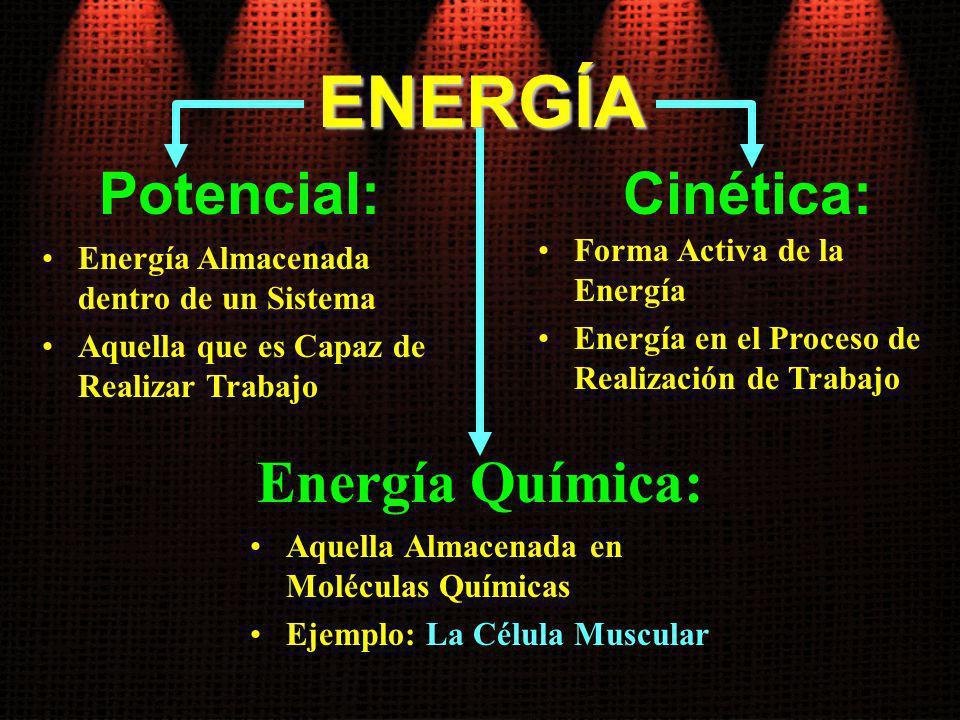 ENERGÍA Potencial: Cinética: Energía Química: