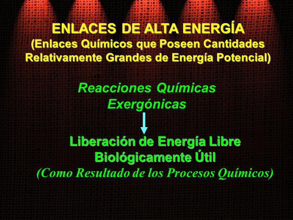 ENLACES DE ALTA ENERGÍA