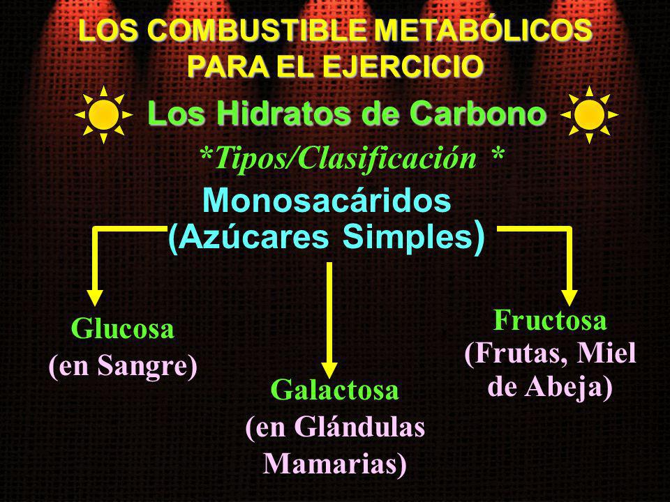 Monosacáridos (Azúcares Simples)