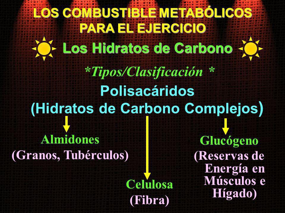 Polisacáridos (Hidratos de Carbono Complejos)