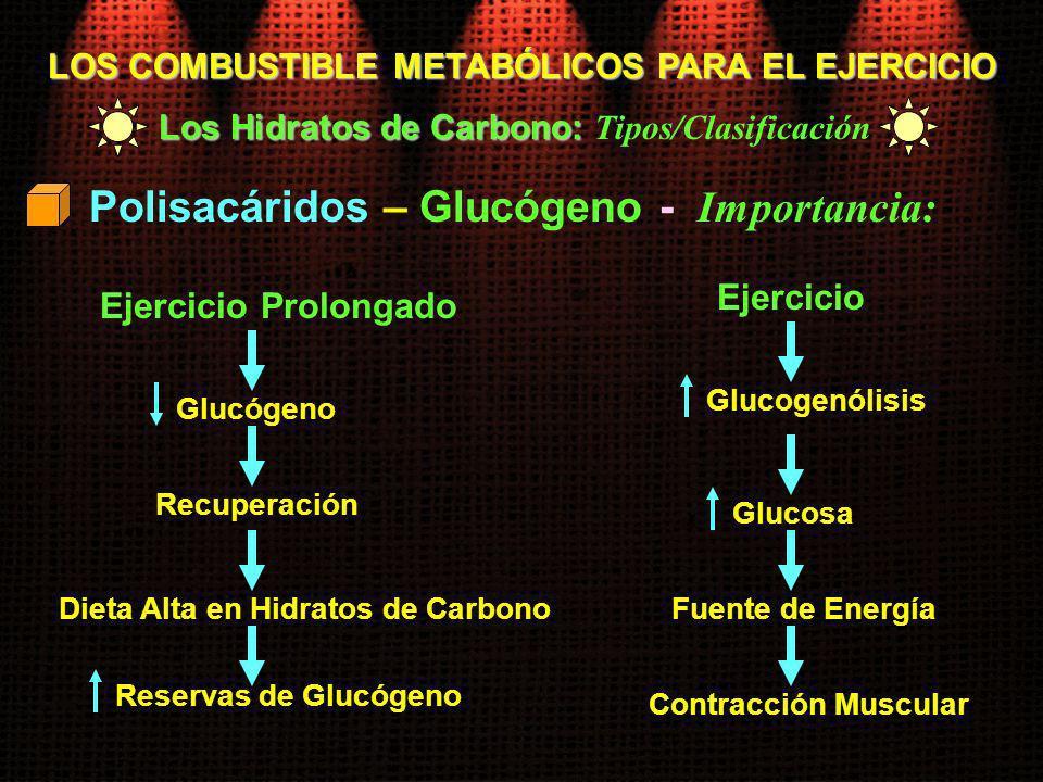 Polisacáridos – Glucógeno - Importancia: