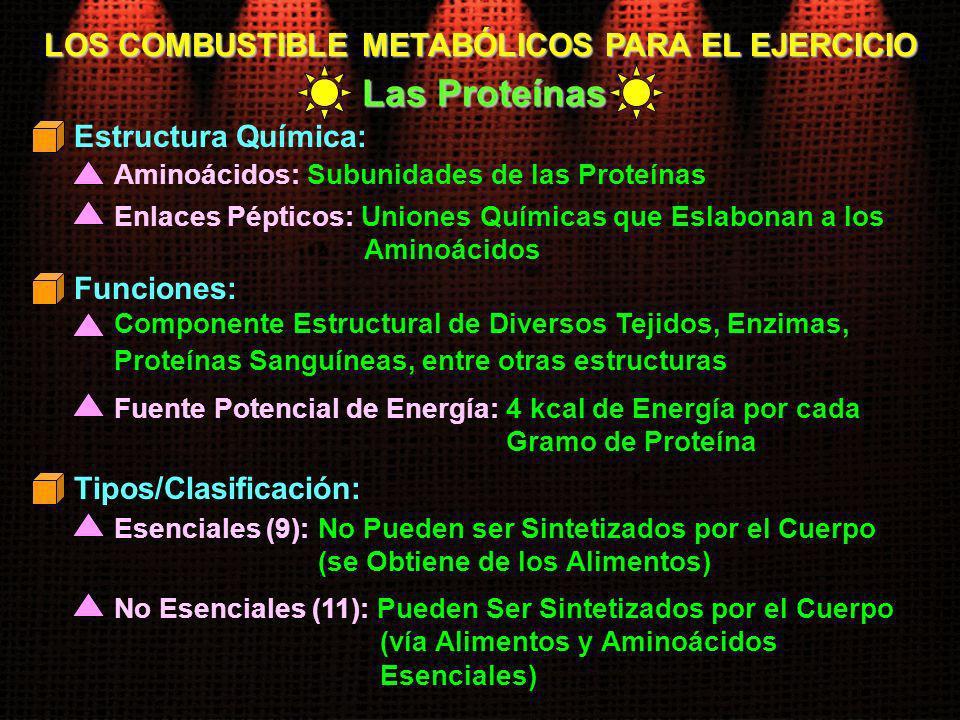 LOS COMBUSTIBLE METABÓLICOS PARA EL EJERCICIO