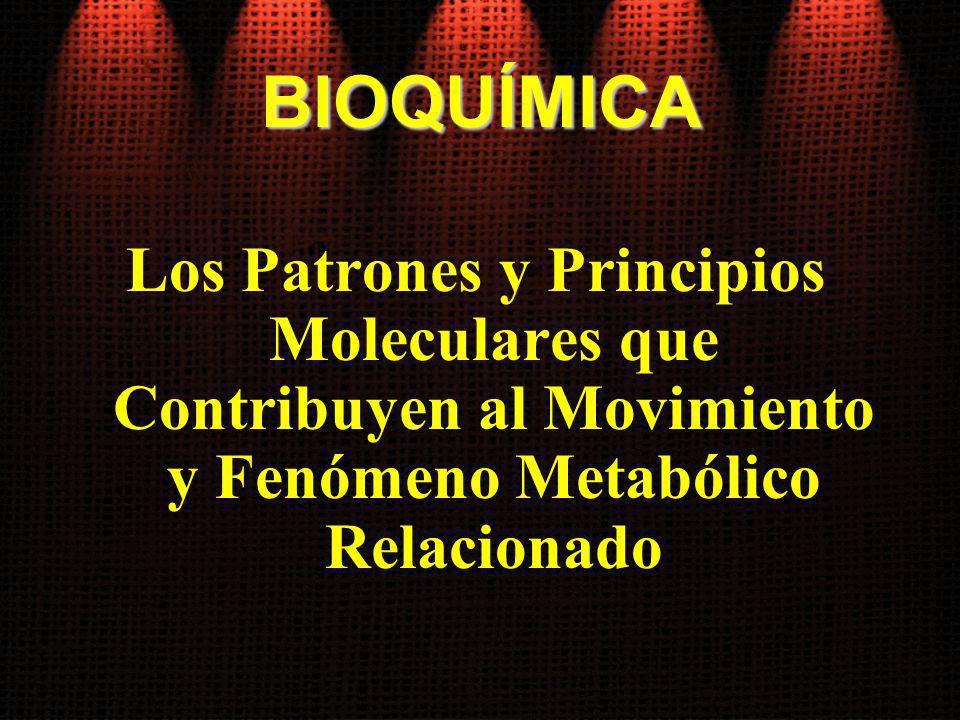 BIOQUÍMICA Los Patrones y Principios Moleculares que Contribuyen al Movimiento y Fenómeno Metabólico Relacionado.
