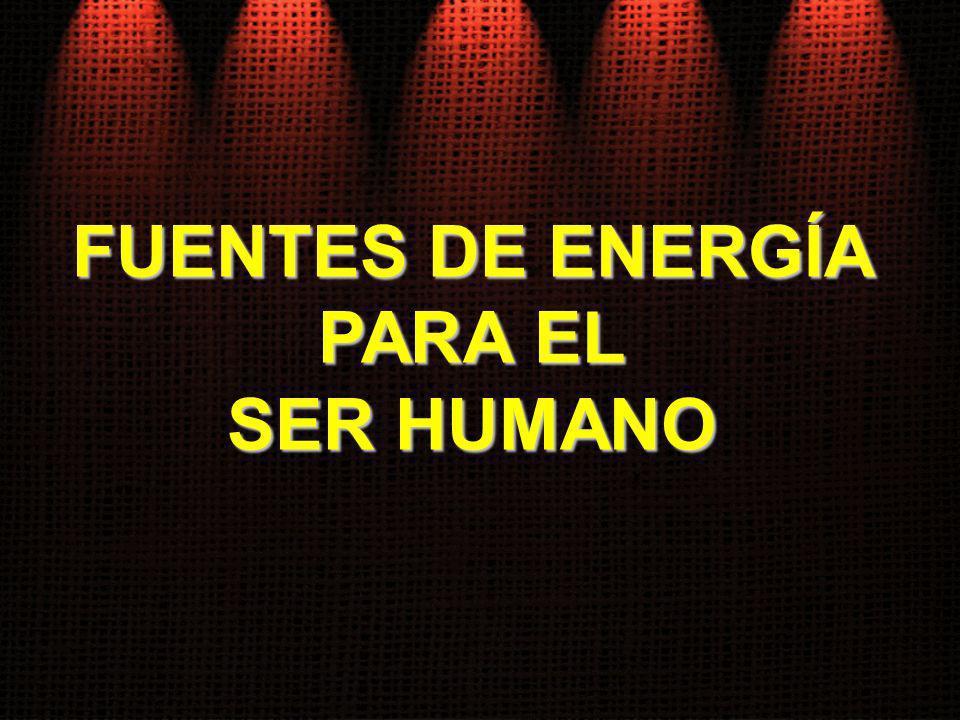 FUENTES DE ENERGÍA PARA EL SER HUMANO
