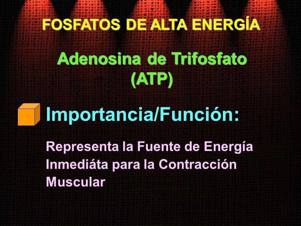 FOSFATOS DE ALTA ENERGÍA Adenosina de Trifosfato