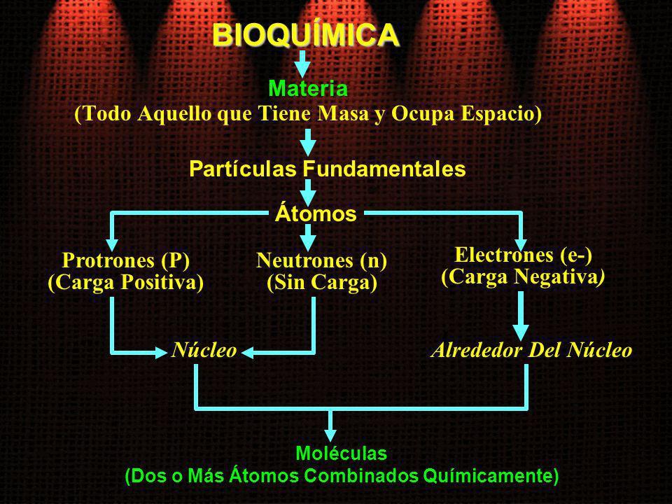 BIOQUÍMICA Materia (Todo Aquello que Tiene Masa y Ocupa Espacio)
