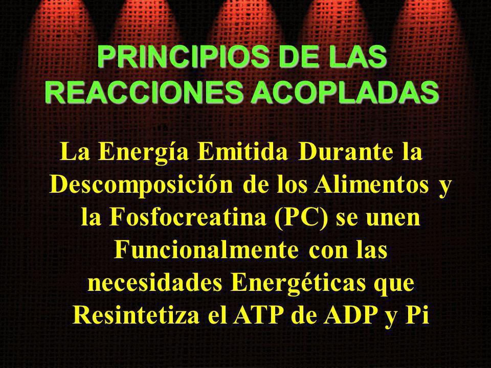 PRINCIPIOS DE LAS REACCIONES ACOPLADAS