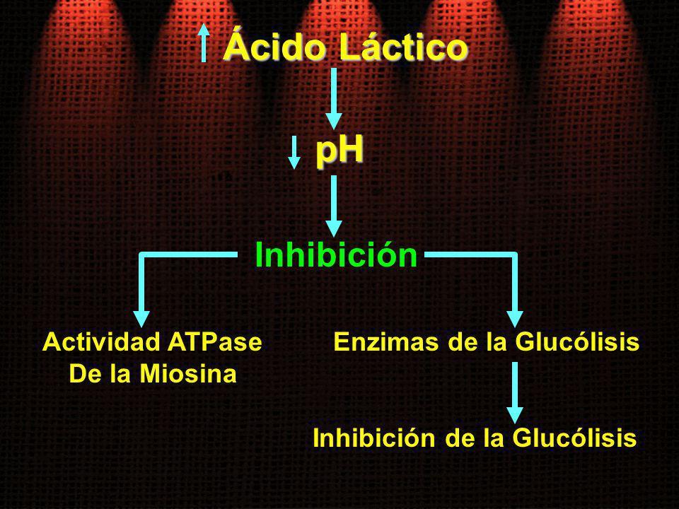Enzimas de la Glucólisis Inhibición de la Glucólisis