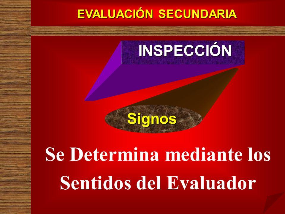 EVALUACIÓN SECUNDARIA Se Determina mediante los Sentidos del Evaluador